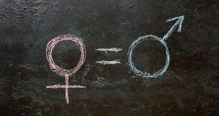 Gender Dysphoria In The Brain