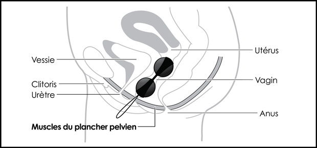 Insertion des Boules de Geisha