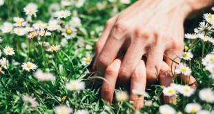 Faire l'Amour dans la Nature ou l'Art des Ebats Bucoliques