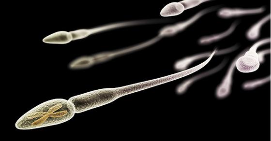 10 Choses Étonnantes Que Vous Ignoriez sur le Sperme