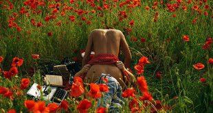 l'amour dans un jardin