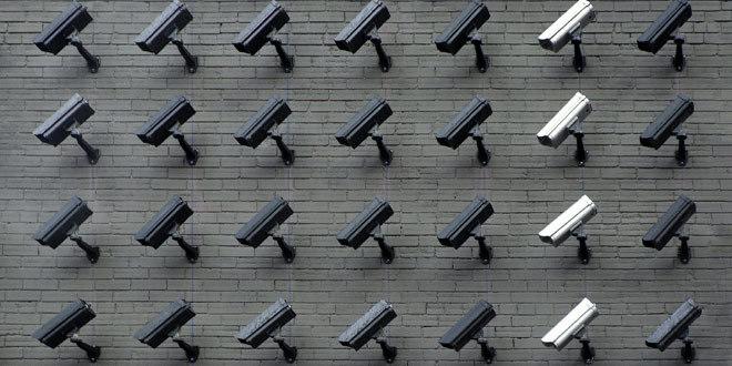 LELO_VOLONTE_6 vibratori che salvaguardano la tua privacy